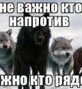 Одинокий Волк-фото