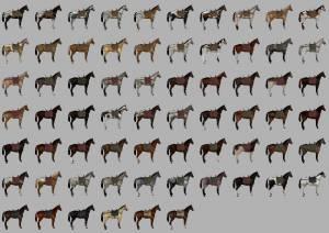 MOD MORE HORSES